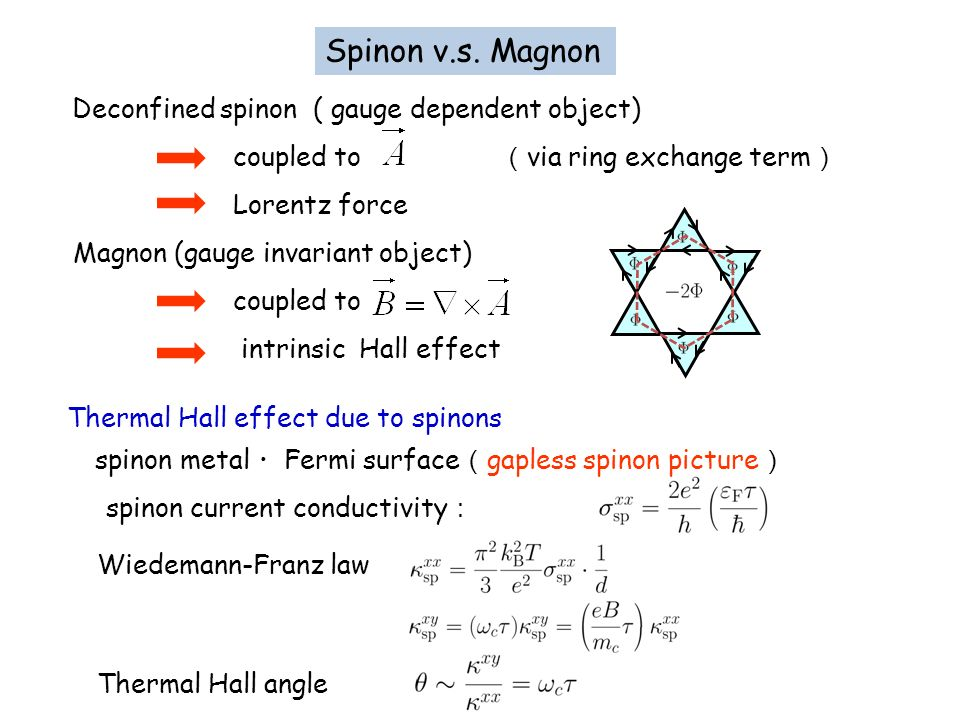 Spinon v.s. Magnon coupled to (via ring exchange term) Lorentz force