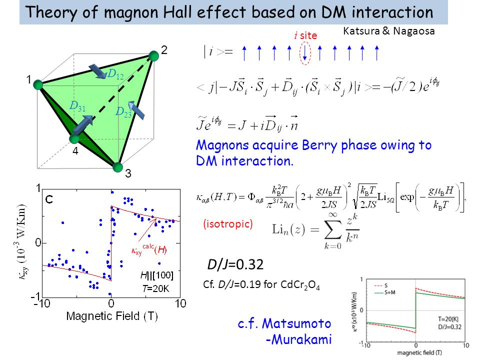 Theory of magnon Hall effect based on DM interaction