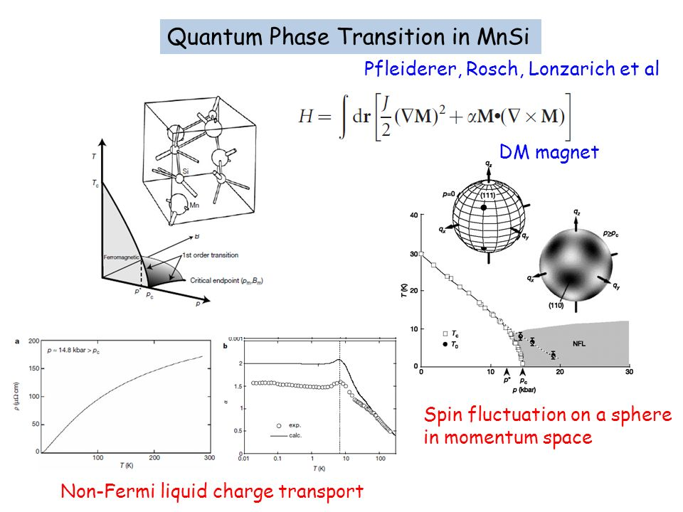 Quantum Phase Transition in MnSi