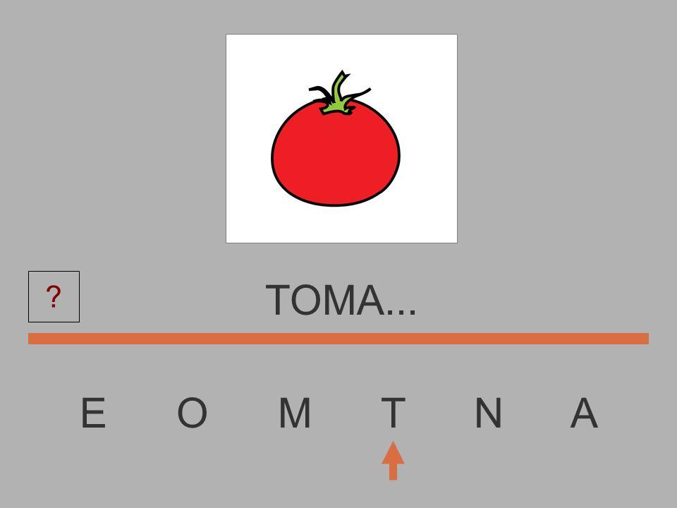 TOMA... E O M T N A