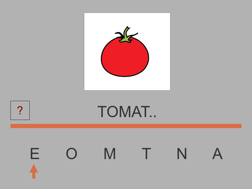 TOMAT.. E O M T N A