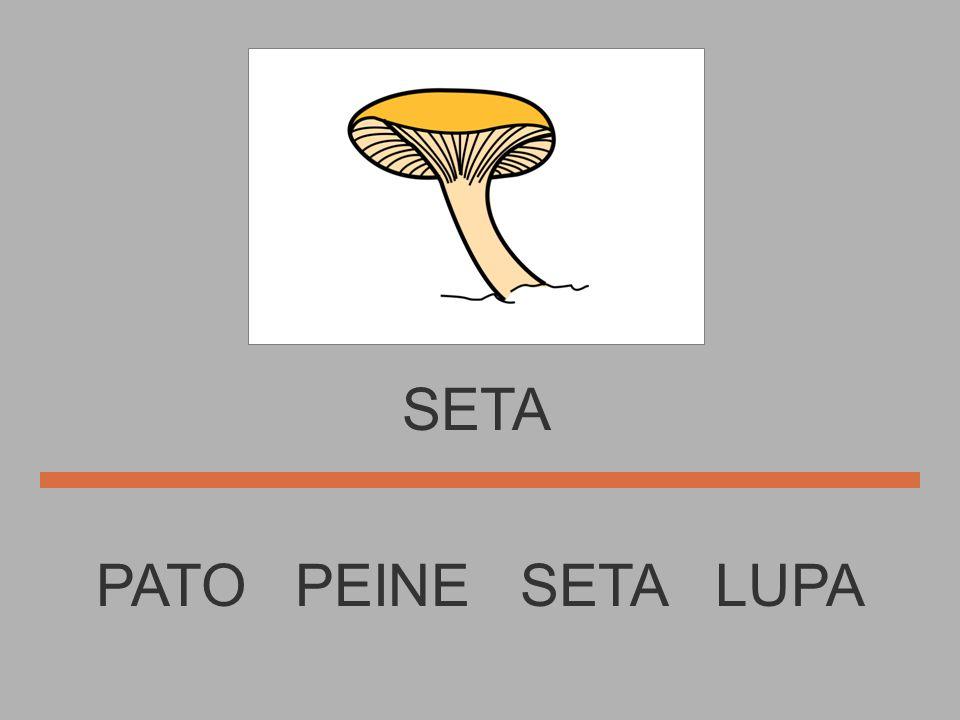 SETA PATO PEINE SETA LUPA