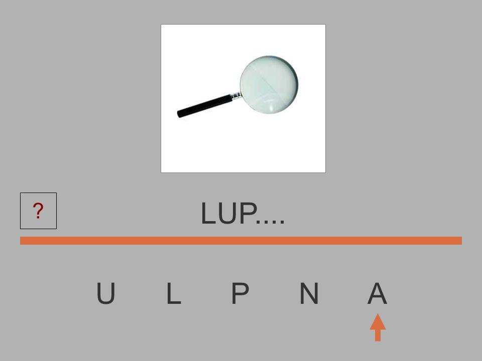 LUP.... U L P N A