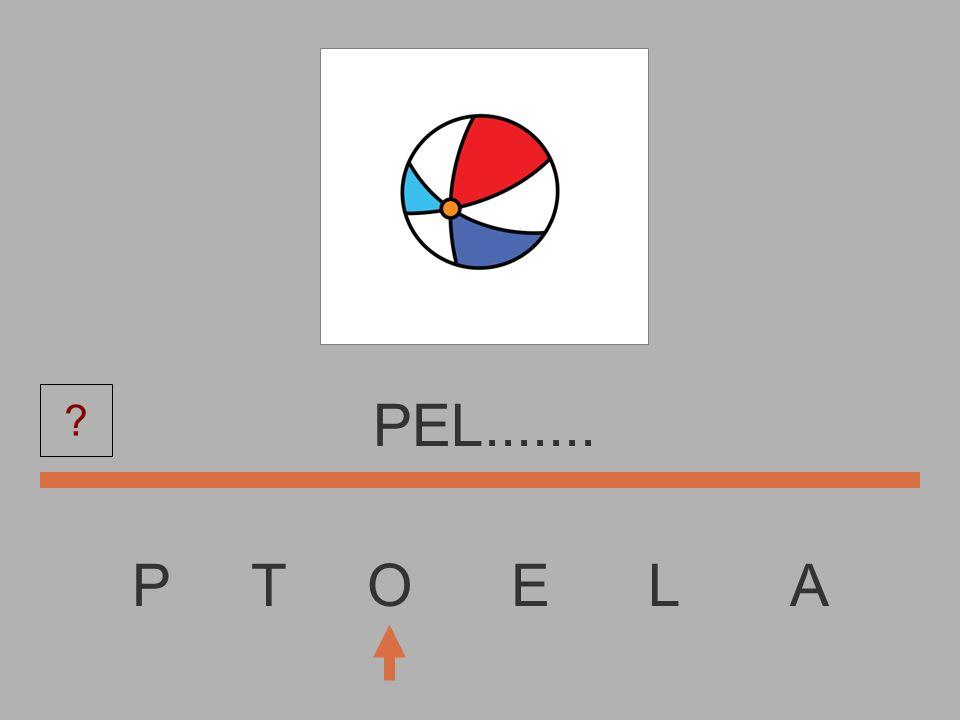 PEL....... P T O E L A