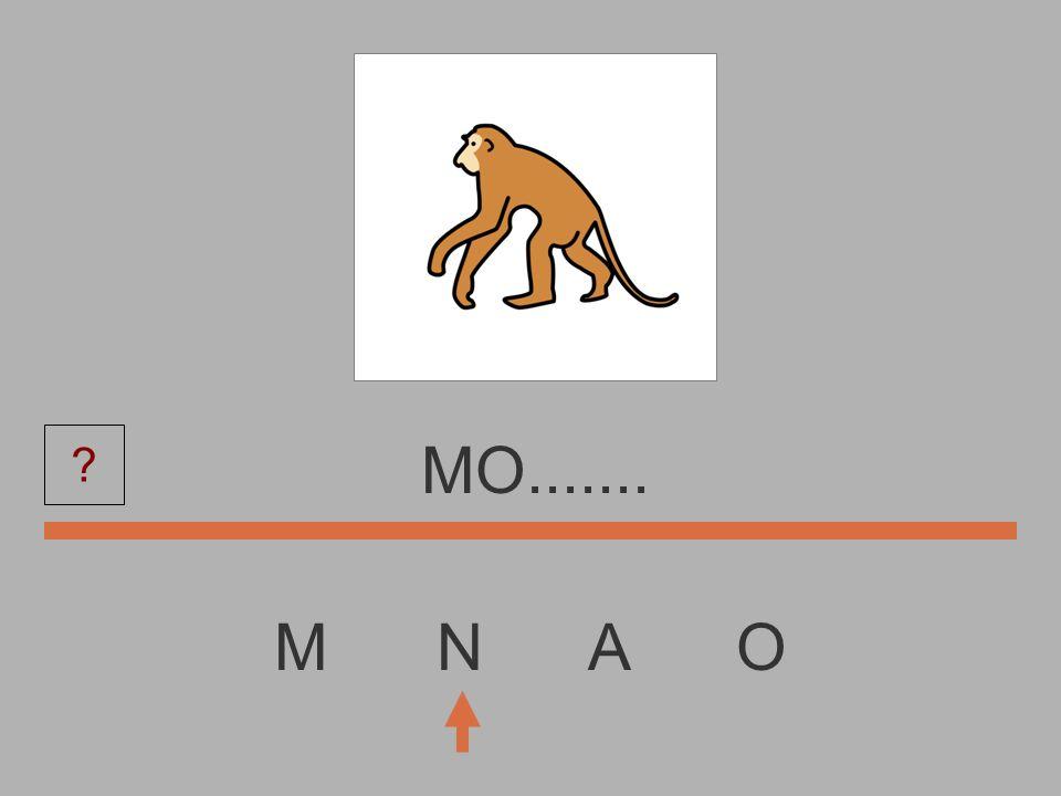 MO....... M N A O