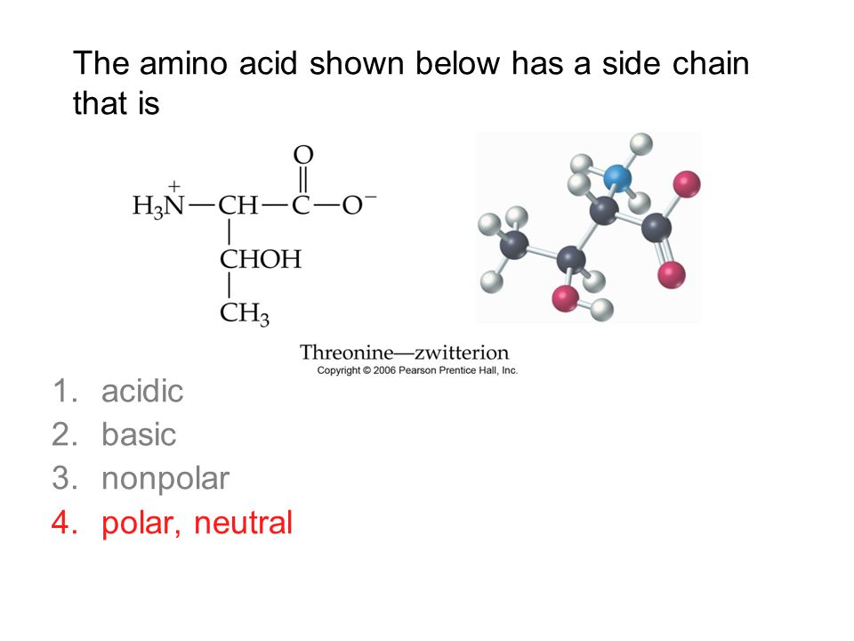 how to remember amino acid side chains