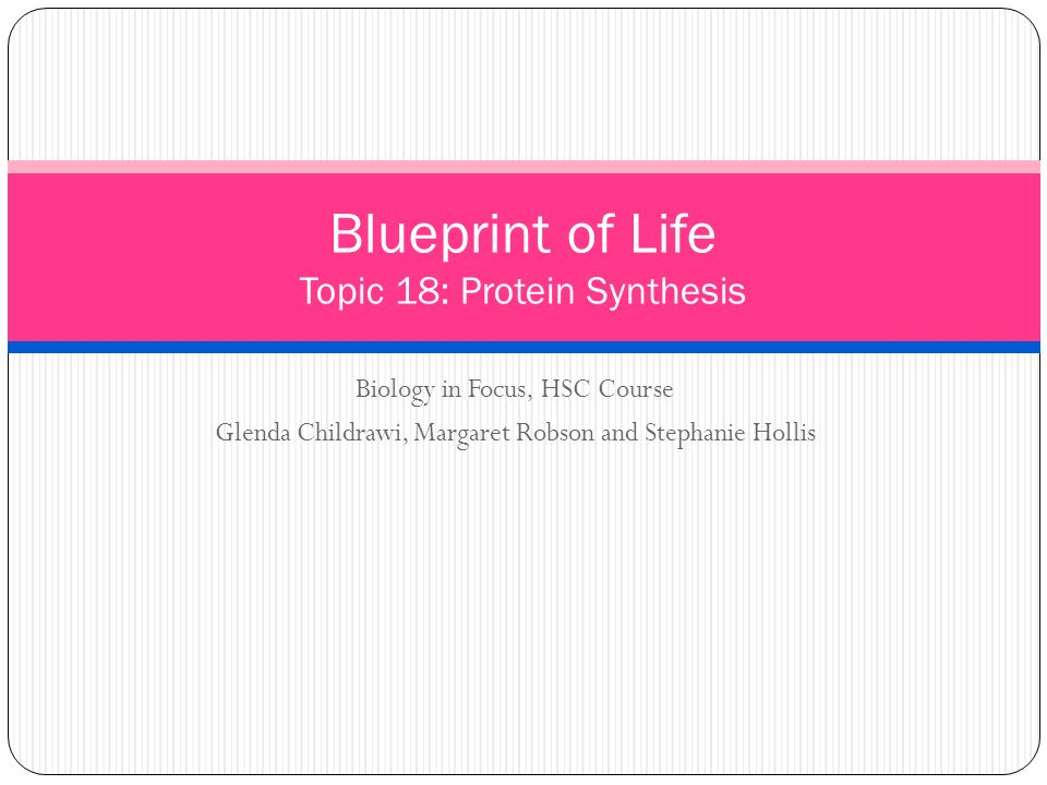 Blueprint of life topic 18 protein synthesis ppt video online blueprint of life topic 18 protein synthesis malvernweather Choice Image