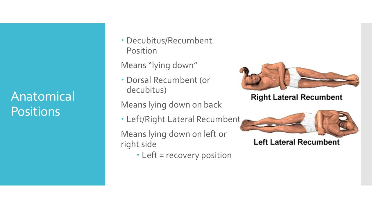 lateral recumbent position - photo #16