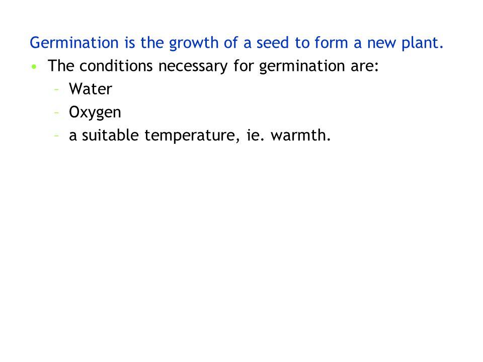 plant en warmth