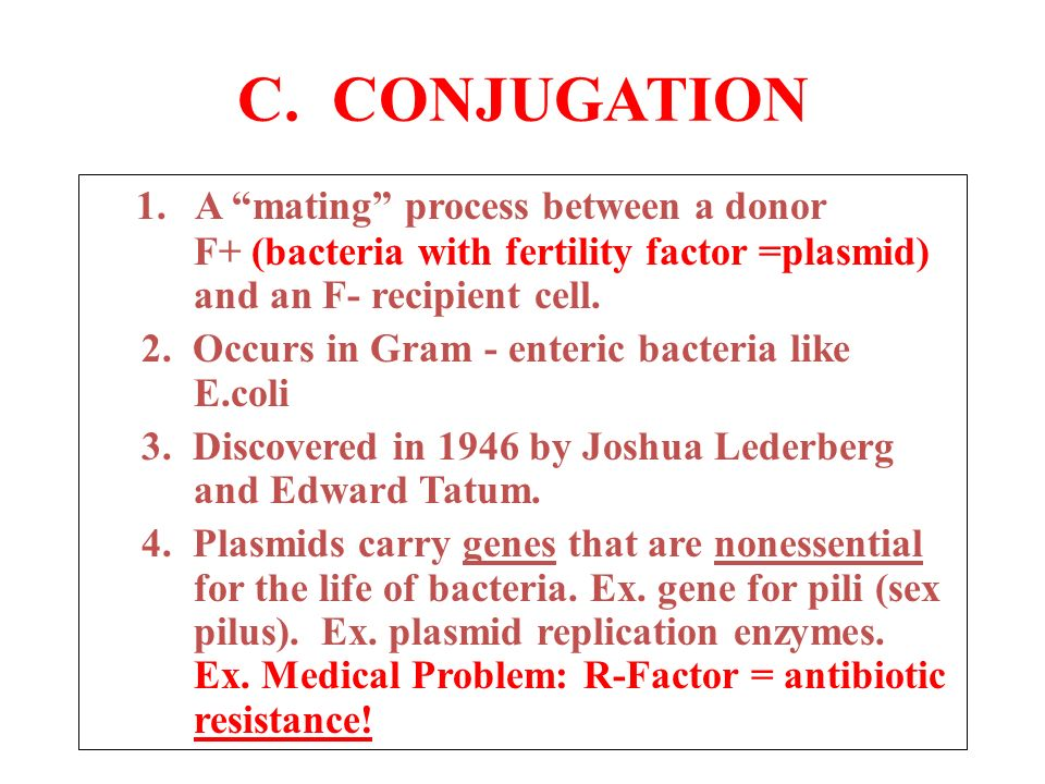 an experiment on bacterial conjugation of the e coli bacteria 3 mechanisms for recombination in bacteria: transformation, conjugation,  into the e coli  experiment showed that bacterial contact is not.