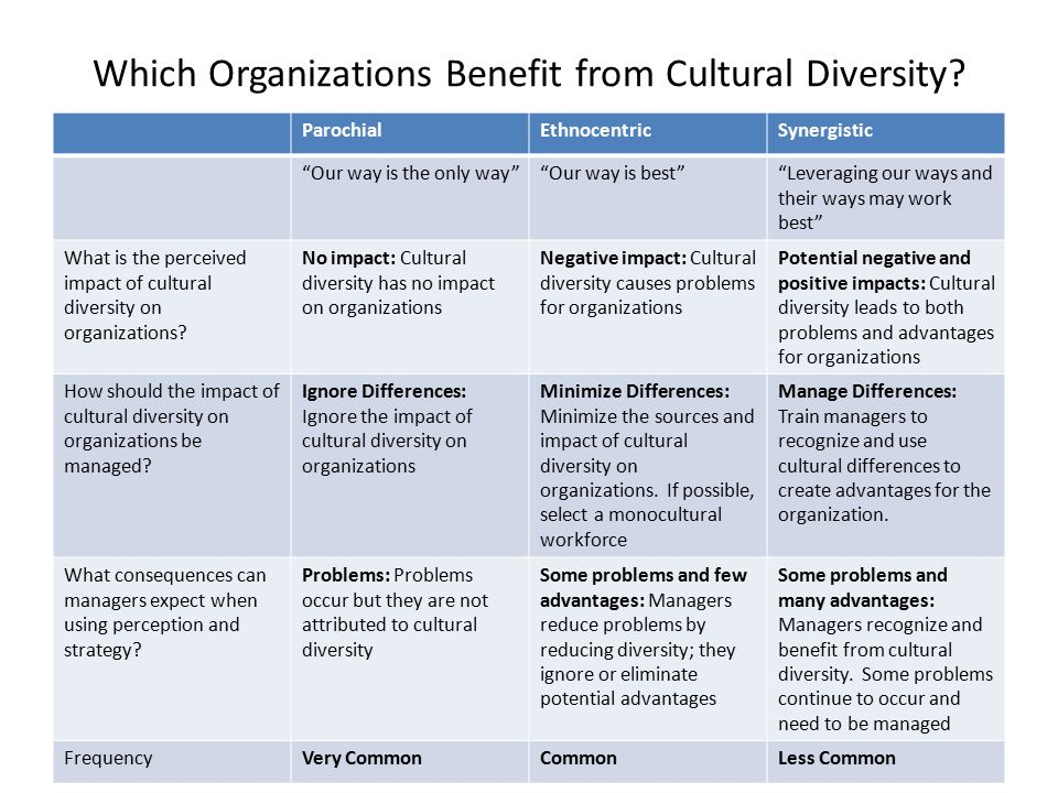 cultural diversity in an organization Diversity management, challenges and opportunities in multicultural organizations  challenges and opportunities in multicultural  cultural diversity,.