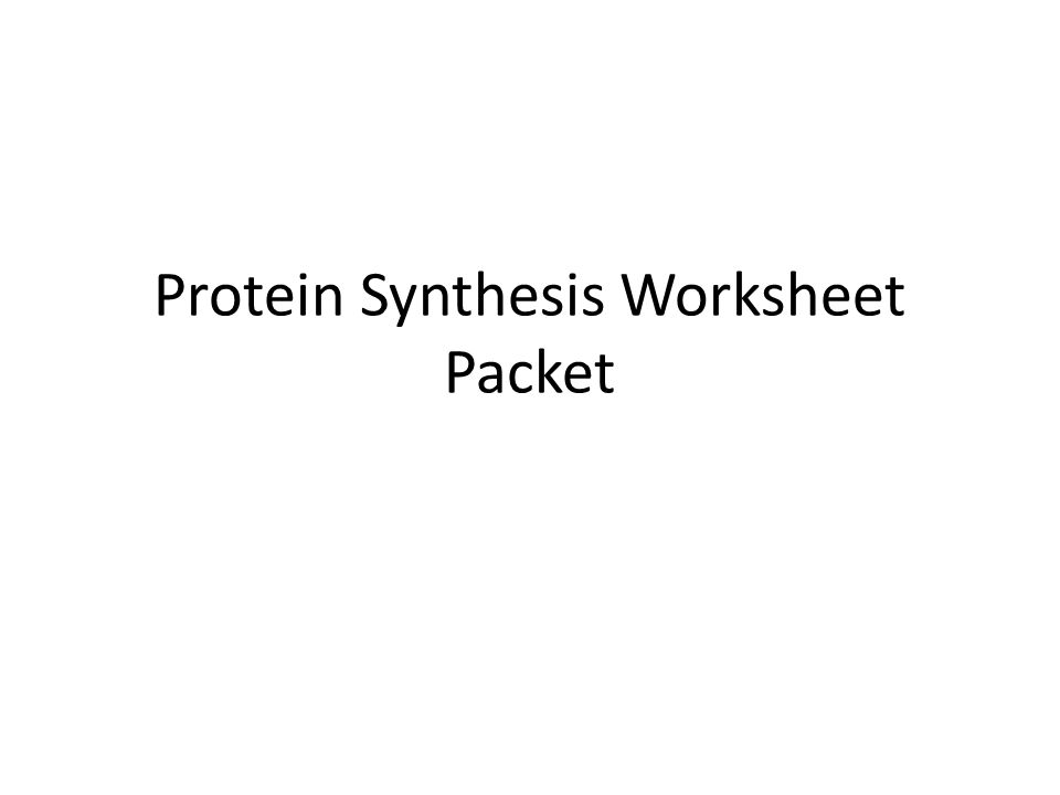 Protein Synthesis Worksheet Packet ppt download – Protein Synthesis Worksheet Answers