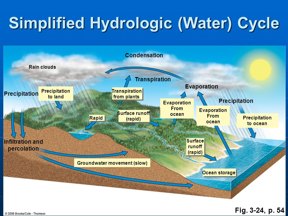 Simplified Hydrologic (Water) Cycle