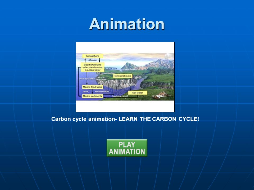 Animation Carbon cycle animation- LEARN THE CARBON CYCLE!