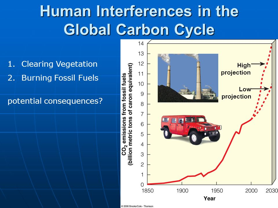 Human Interferences in the Global Carbon Cycle