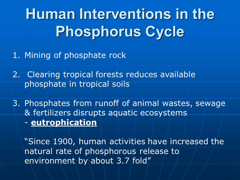 Human Interventions in the Phosphorus Cycle