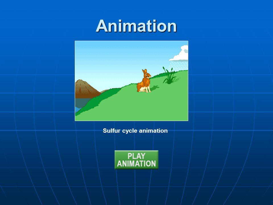 Animation Sulfur cycle animation
