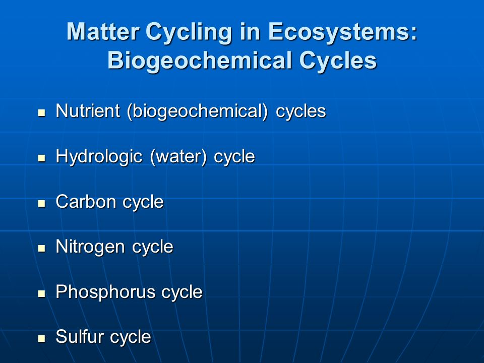 Matter Cycling in Ecosystems: Biogeochemical Cycles