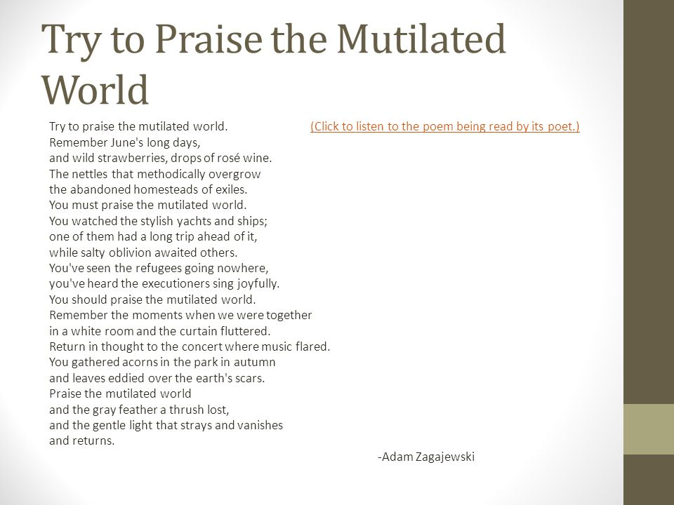 Try to Praise a Mutilated World by Adam Zagajewski