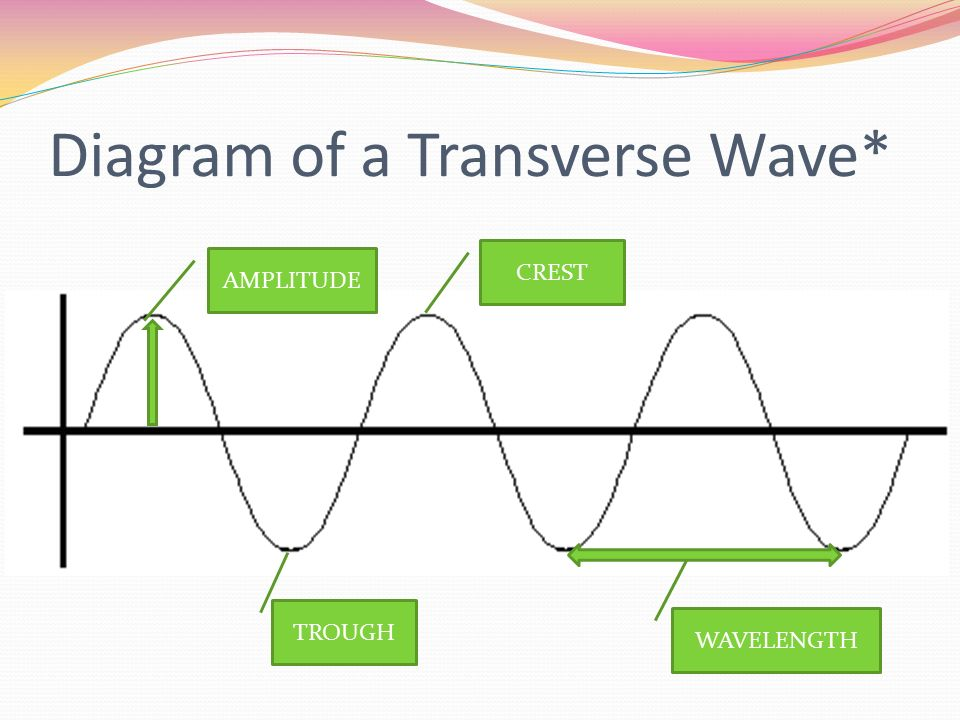 Diagram of a Transverse Wave*