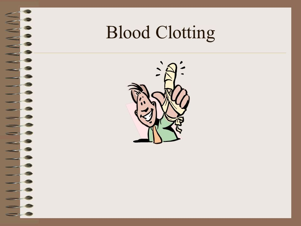 chapter 18 blood composition Chapter 17 blood blood composition plasma although it is mostly water (about 90%), plasma contains over 100 different dissolved solutes, including nutrients, gases, hormones, wastes and.