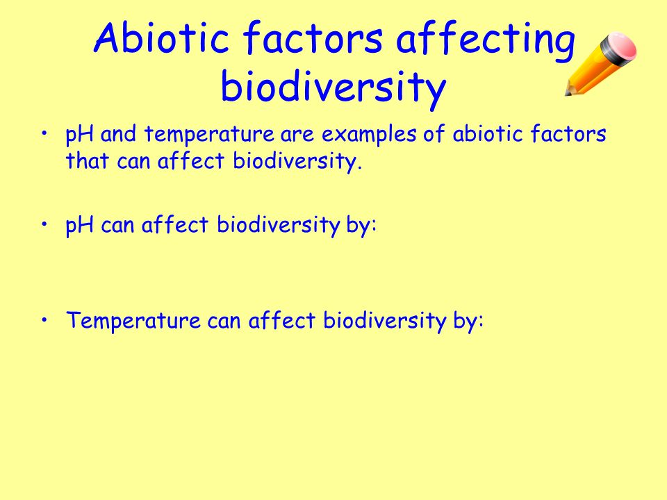 How do biotic and abiotic factors relate to each other?