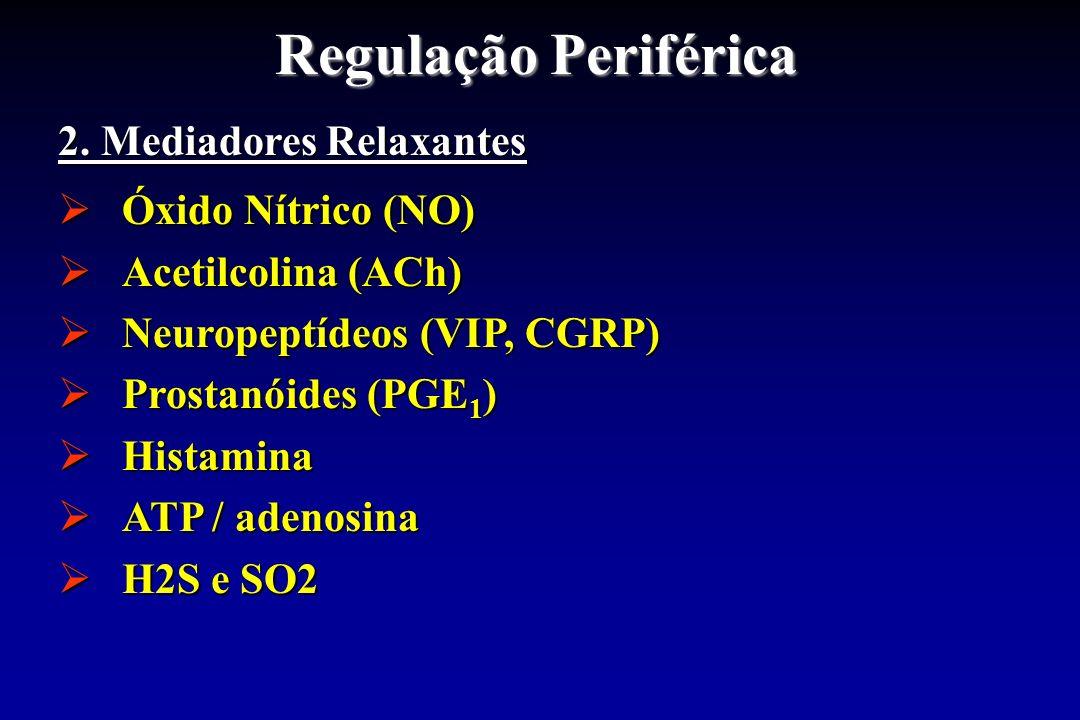Regulação Periférica 2. Mediadores Relaxantes Óxido Nítrico (NO)