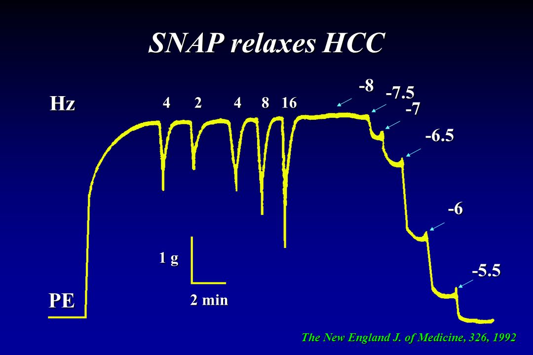 SNAP relaxes HCC Hz PE -8 -7.5 -7 -6.5 -6 -5.5 4 2 4 8 16 1 g 2 min