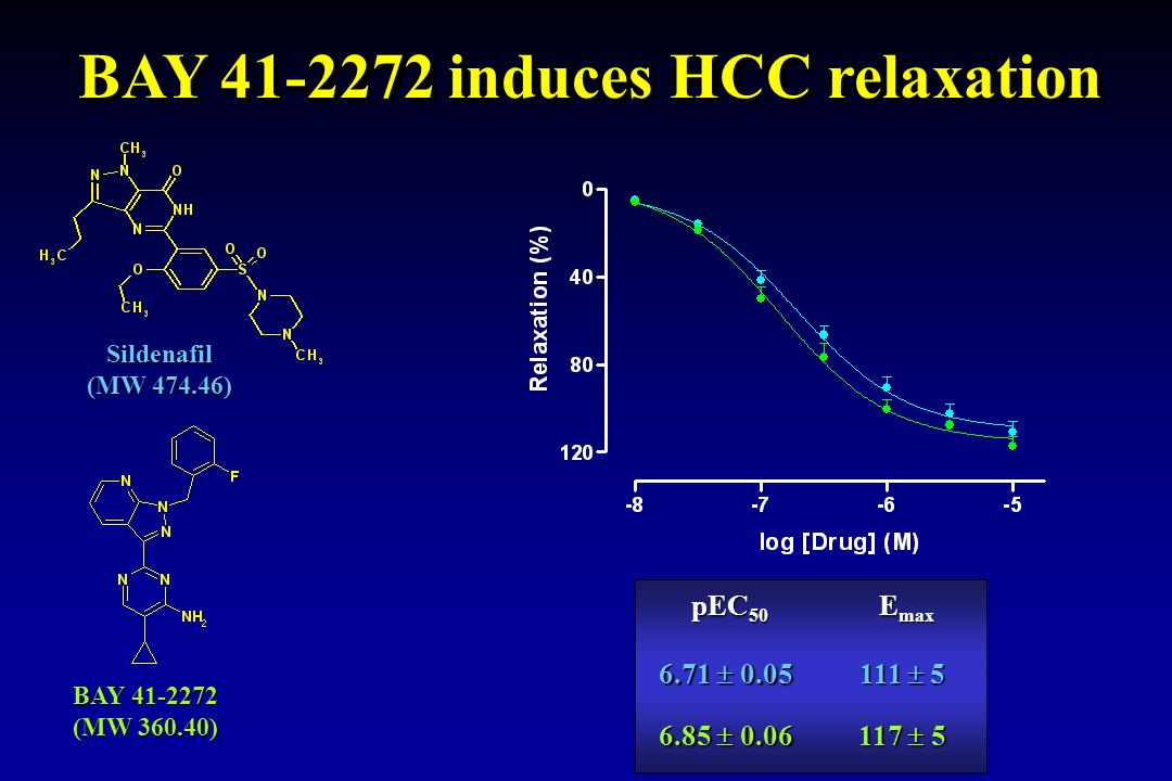 BAY 41-2272 induces HCC relaxation