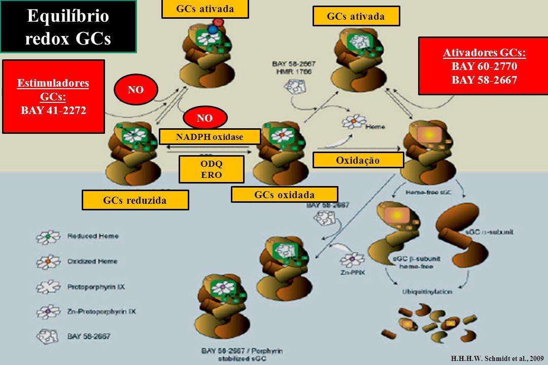 Equilíbrio redox GCs Ativadores GCs: BAY 60-2770 BAY 58-2667