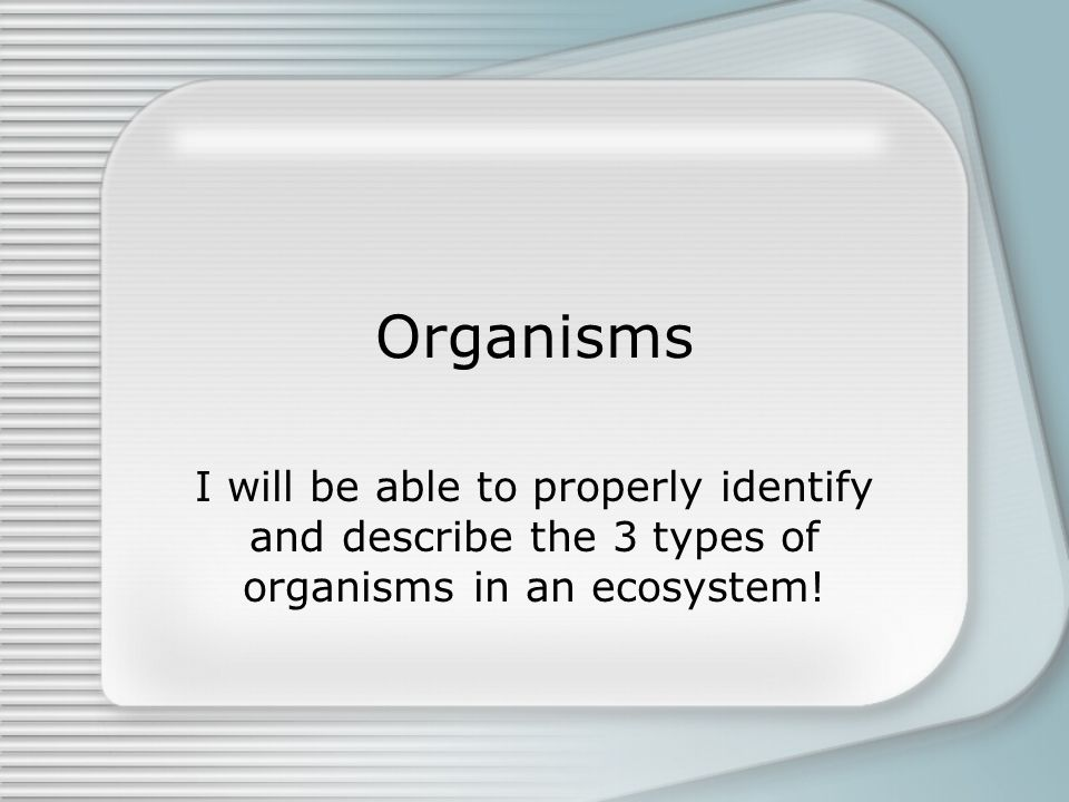 1 Organisms I will be able to properly identify and describe the 3 types of organisms in an ecosystem!