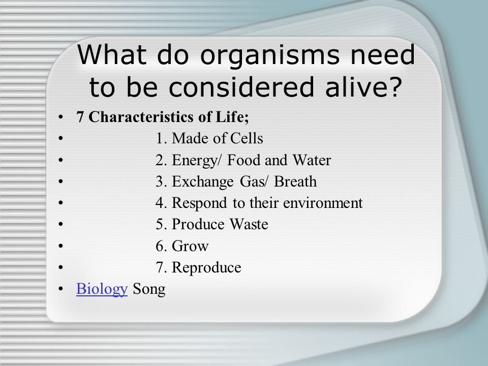 What do organisms need to be considered alive
