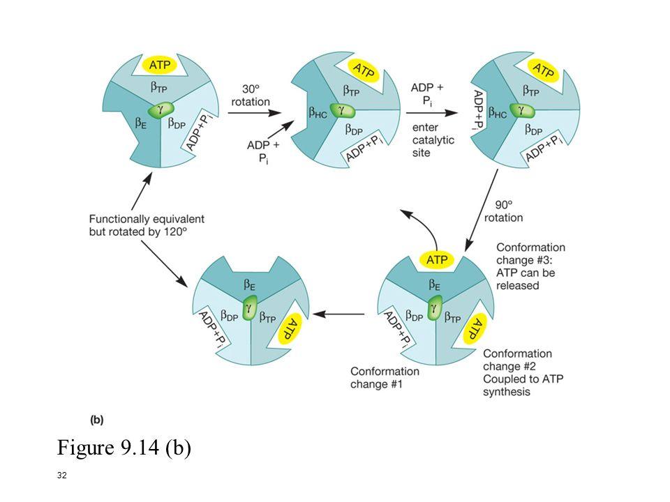 book steuerung von gaspreisrisiken konzeption eines preisrisikomanagements für gasversorger
