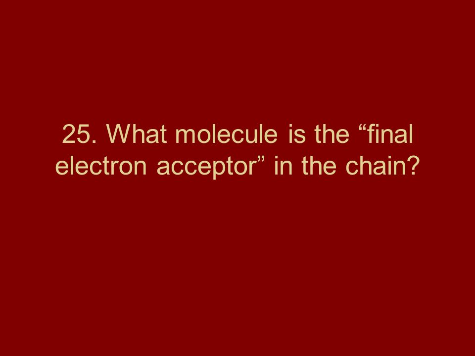 25. What molecule is the final electron acceptor in the chain