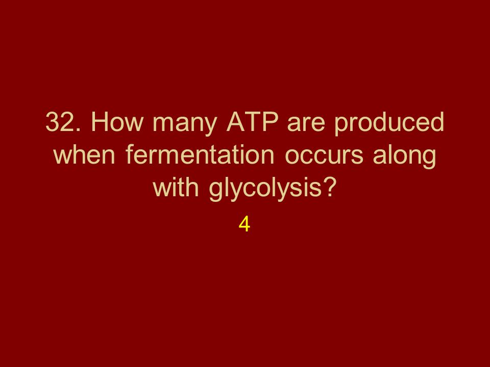 32. How many ATP are produced when fermentation occurs along with glycolysis
