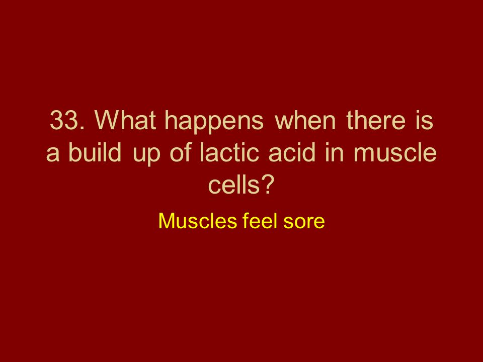 33. What happens when there is a build up of lactic acid in muscle cells