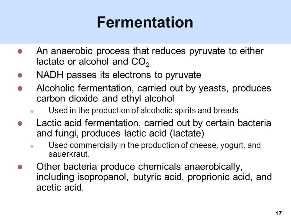 production of acetic acid by fermentation process pdf