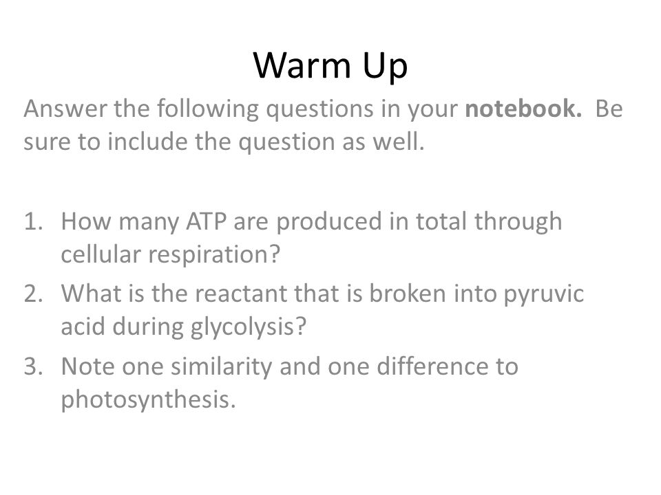 Warm Up Answer the following questions in your notebook. Be sure to include the question as well.