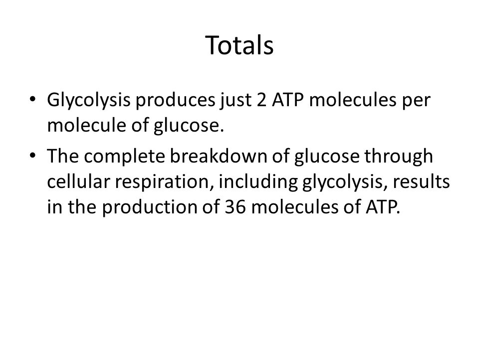 Totals Glycolysis produces just 2 ATP molecules per molecule of glucose.