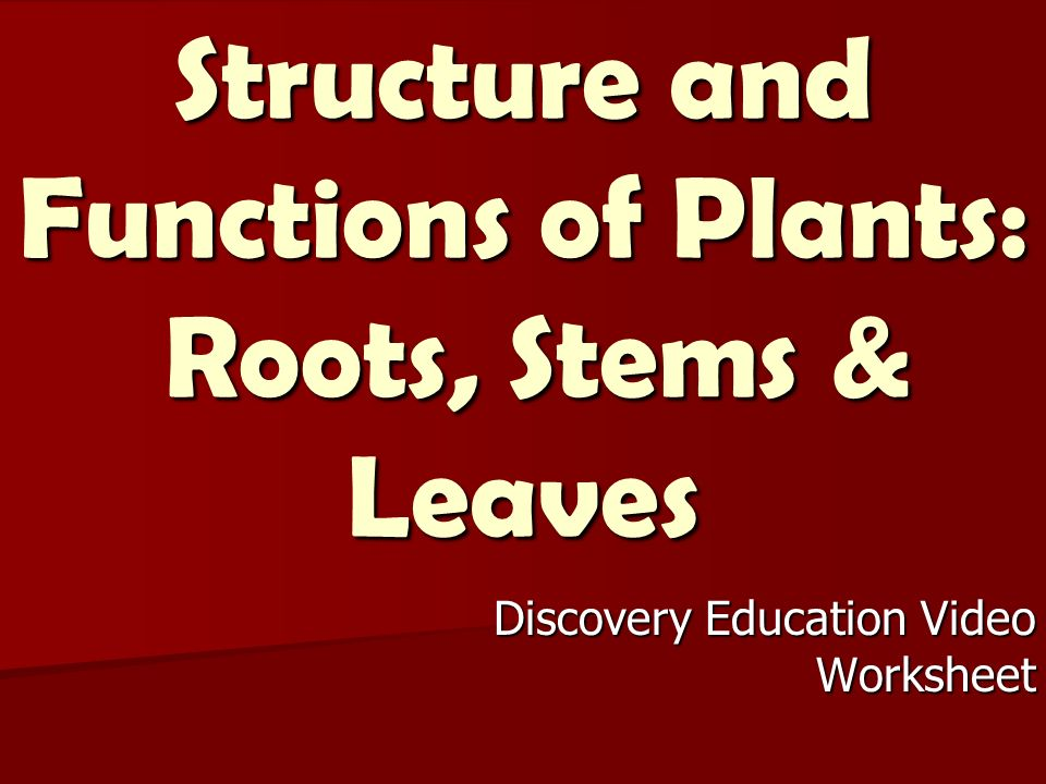 structure and functions of education Unesco international bureau of education the developments in education: the education system at the end of the 20th century 1990-2000 national report of.