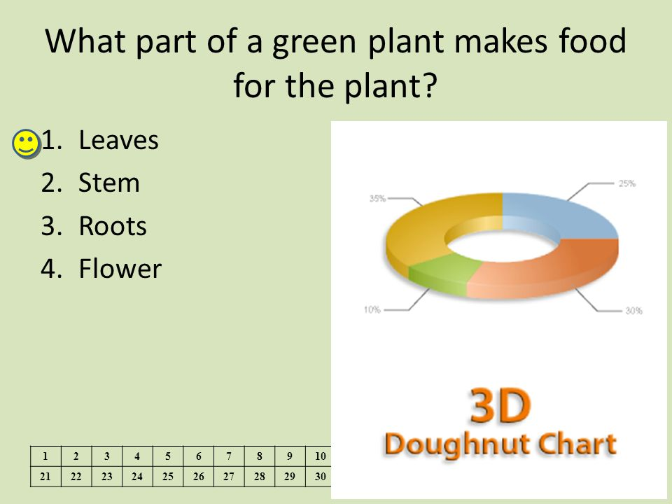 What part of a green plant makes food for the plant