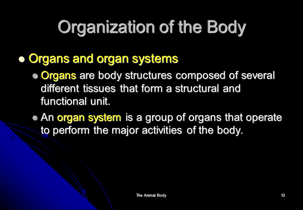 The Animal Body: Introduction to Structure and Function - ppt ...