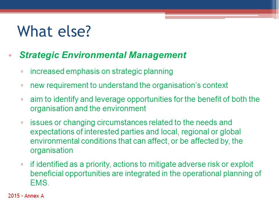 What else Strategic Environmental Management