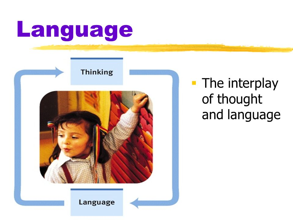 Language The interplay of thought and language