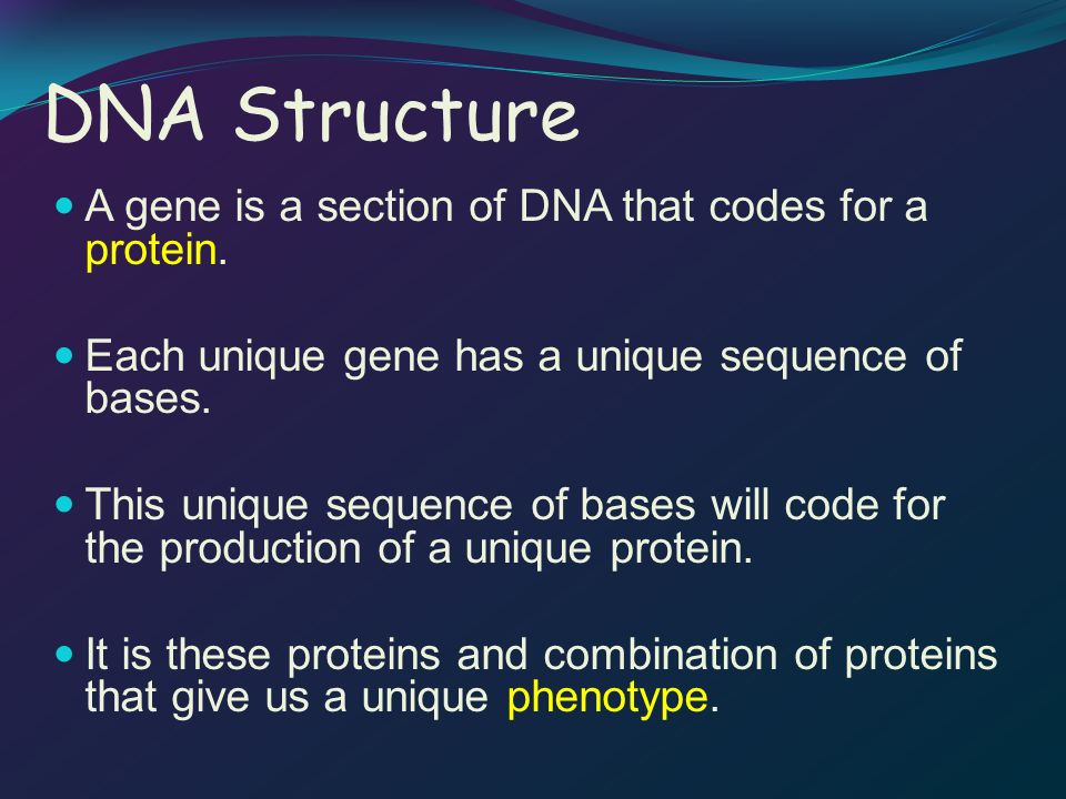 DNA to mRNA for three diferent strands of DNA, given