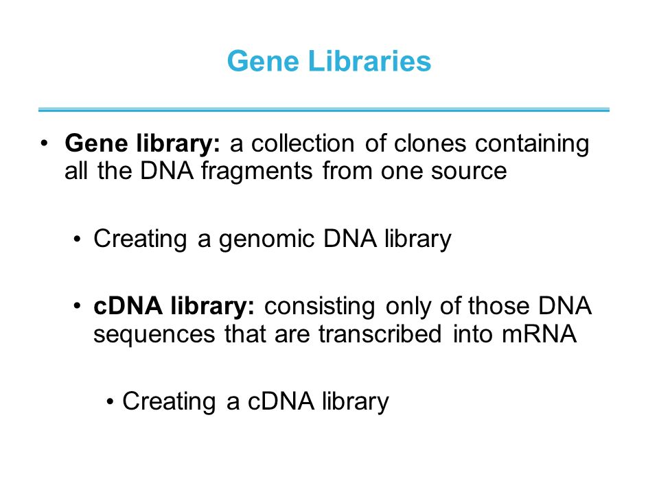 Gene Libraries Gene library: a collection of clones containing all the DNA fragments from one source.