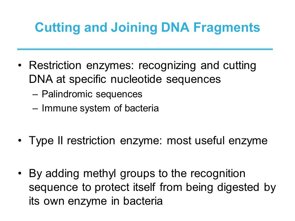 Cutting and Joining DNA Fragments