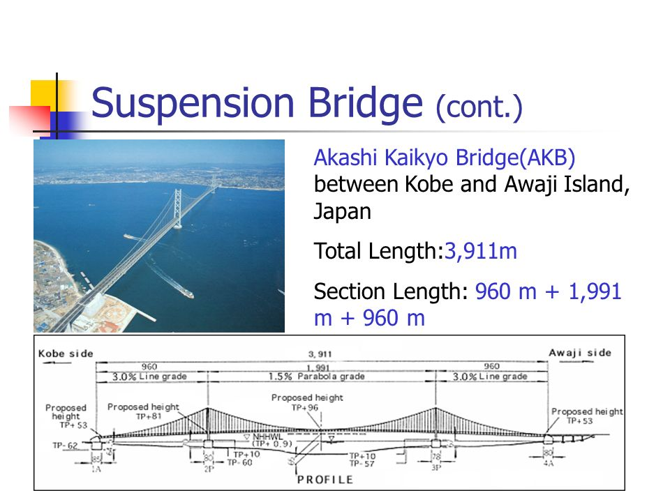 Suspension Bridge (cont.)