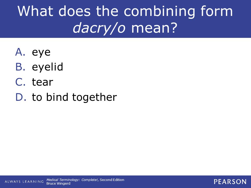 14 The Special Senses of Sight and Hearing. - ppt download