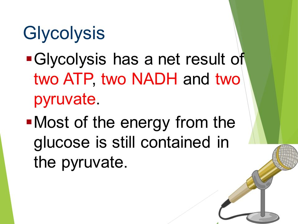 Glycolysis Glycolysis has a net result of two ATP, two NADH and two pyruvate.